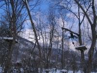 Abschneiden eines abgerissenen Astes in einem Abenteuerpark