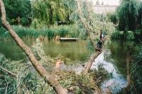 Fällen eines vom Sturm ins Wasser gestürzten Baumes